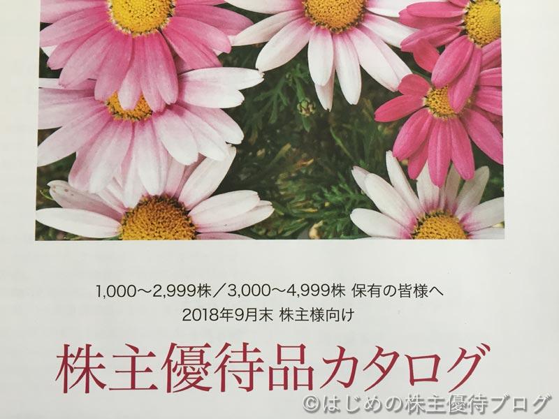 大和証券グループ本社株主優待品カタログ
