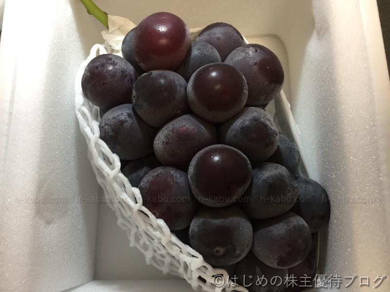 大黒天物産株主優待大粒葡萄ビオーネ